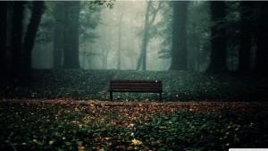 Hiljaista maaseudulla
